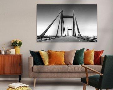 Die Prinz-Willem-Alexander-Brücke von Marijke van Loon