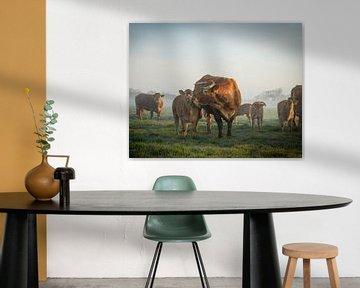 Koe en kalf van Dirk van Egmond