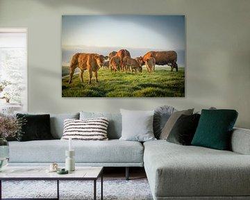 Koeien en kalveren van Dirk van Egmond