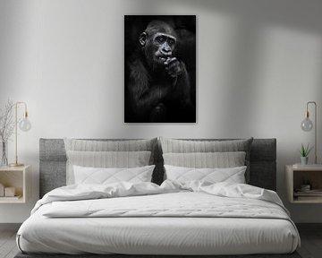 De leuke babygorilla knaagt iets met witte tanden die in zijn handen, donkere achtergrond, expressie van Michael Semenov