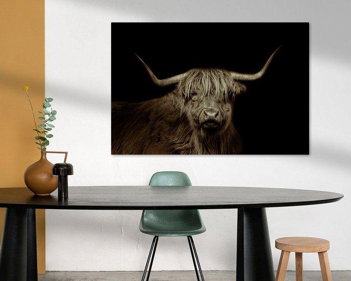 Beispiel: Schottischer Highlander, langhaariges Rind, in schwarz und weiß von Gert Hilbink