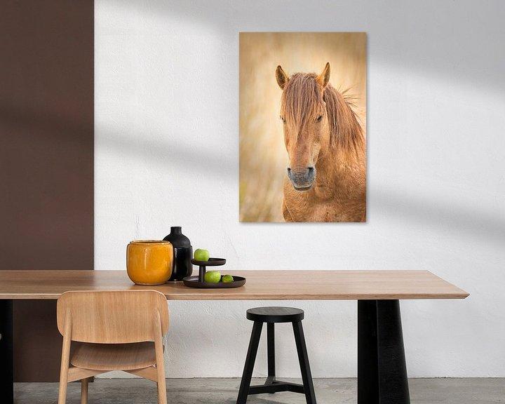 Sfeerimpressie: Paard van Visueelconcept