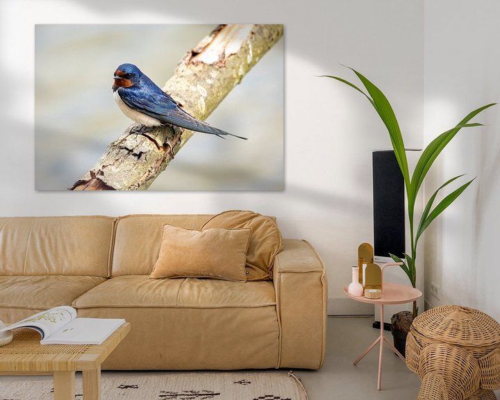 Sfeerimpressie: Eén zwaluw maakt nog geen zomer van OCEANVOLTA