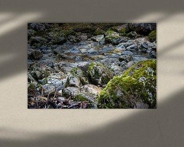 Bemooste Steine an einem Gebirgsbach von Sonja Birkelbach