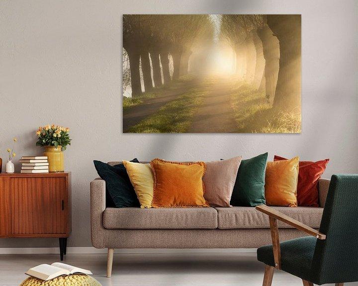 Beispiel: Neblige Baumallee mit warmem Licht von Ellen van den Doel