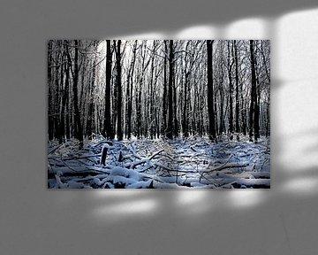 Winter in het bos sur Antwan Janssen