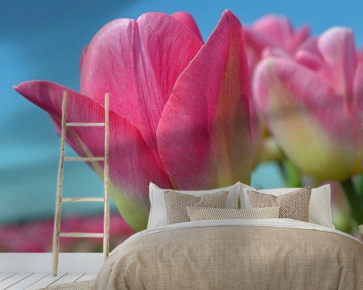 Impression: Tulipes roses dans la zone de culture des bulbes/les Pays-Bas sur JTravel