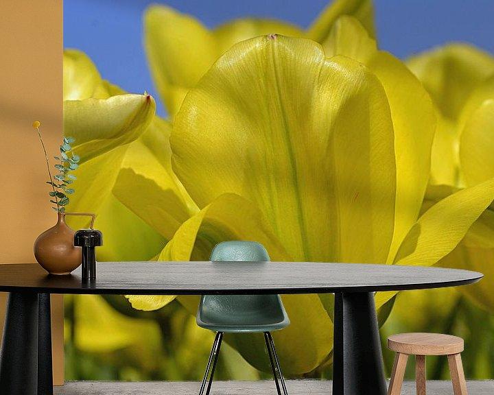 Sfeerimpressie behang: Gele tulpen in de Bollenstreek/Nederland van JTravel