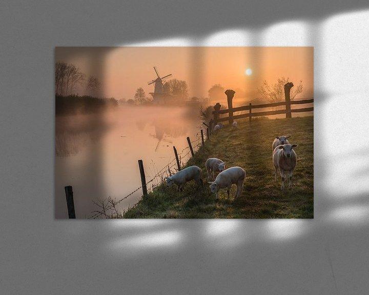 Impression: Moulin de Vlinder par un matin brumeux dans la Betuwe sur Jeroen de Jongh