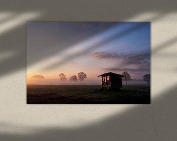 Le soleil levant se reflète dans le petit matin