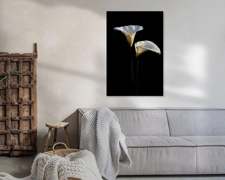 Beispiel: Zwei Blüten der Zantedeschia aethiopica oder Calla von Ulrike Leone