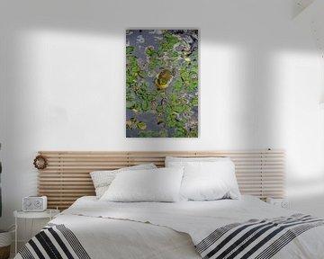 Groene en gele kikker in een vijver vol met zeebladeren van LuCreator