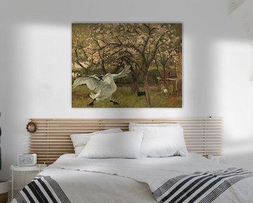 Der bedrohte Schwan in einem blühenden Baum in einem Obstgarten von Eigenwijze Fotografie