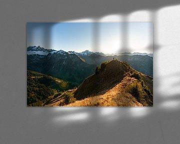 Prachtig uitzicht op de Allgäuer Hochalpen van Leo Schindzielorz