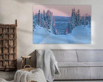 Zonsopgang tijdens een rit over de Zweedse bergen tijdens de vroege winter. van Mindy Molein