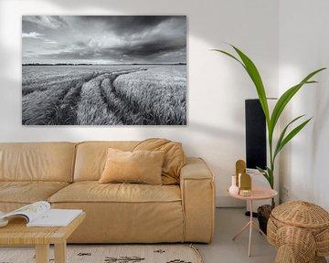Een weids landschap met mooie wolkenluchten boven de akkers met graan in het Hogeland van Groningen van Bas Meelker