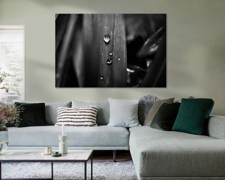 Beispiel: Schwarz-Weiß-Makroaufnahme eines Blattes mit Wassertropfen von Photography by Naomi.K