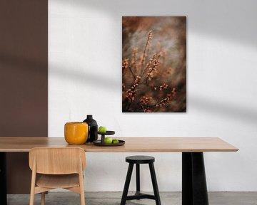 Bloemen detail in warme herfstkleuren van Holly Klein Oonk