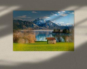 Panorama-uitzicht over de Forggensee van Leo Schindzielorz