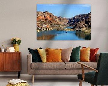 Canyon del Atuel van Antwan Janssen