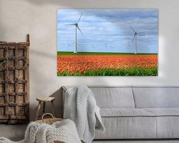 Tulpen in bloei in een veld in de lente met windturbines van Sjoerd van der Wal