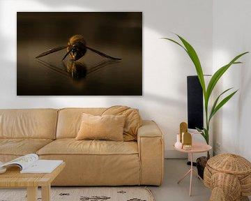 Fliegender Spiegel von Customvince | Vincent Arnoldussen