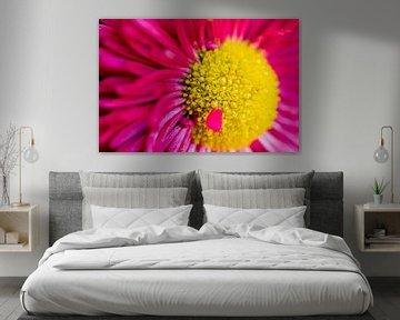 Macrofoto van een roze bloem. van GiPanini
