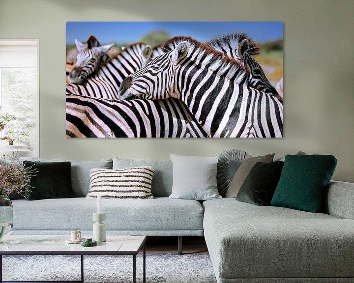 Beispiel: Entspannte Zebras, Namibia von W. Woyke