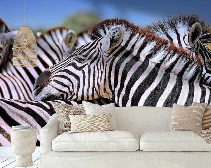 Beispiel fototapete: Entspannte Zebras, Namibia von W. Woyke