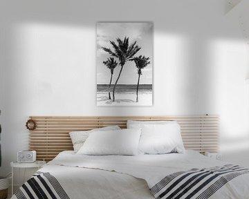 Tropische Palmen | Schwarz-Weiß-Fotografie | Florida | Strand von Mirjam Broekhof