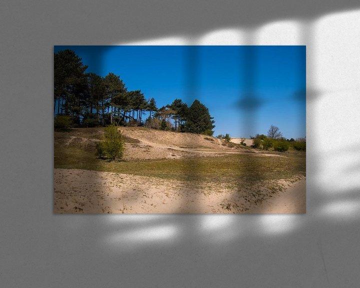 Beispiel: Dünen im Wald von Consala van  der Griend