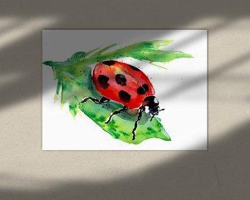 Kleiner Marienkäfer auf einem grünen Blatt von ZeichenbloQ