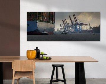 Groot containerschip komt aan in de haven van Hamburg van Jonas Weinitschke