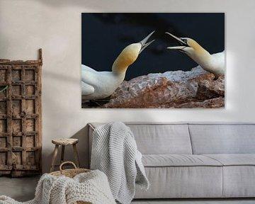 Helgoland von Edwin Hendriks