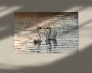 In love II van Diane van Veen