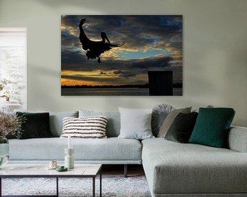 vliegende pelikaan. von Tilly Meijer