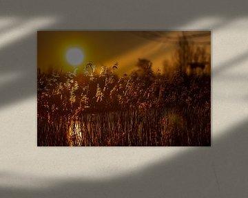 Sonnenaufgang von Mooie Foto
