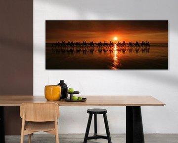 Kamelenrit tijdens zonsondergang van Antwan Janssen