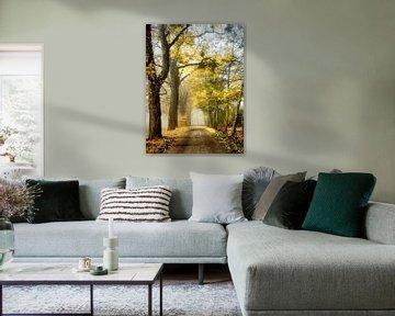 Der Weg zu Ihnen von Lars van de Goor