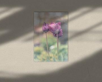 bloemen part 119 van Tania Perneel