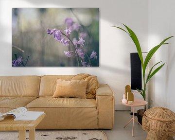 Blumen Teil 120 von Tania Perneel