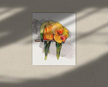Zwei kuschelnde Sonnensittiche von Bianca Wisseloo