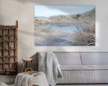 Helmgras langs het meer van DsDuppenPhotography