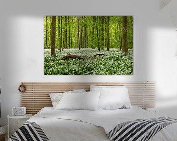 Waldbaden von Thomas Herzog