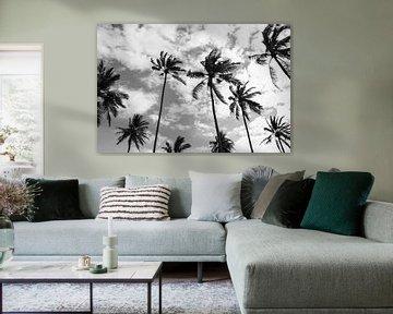 Palmen am Strand von Bali von Ellis Peeters