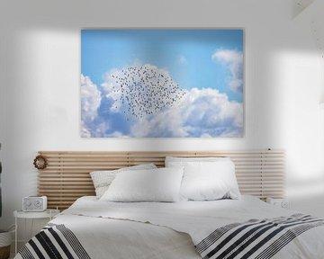 Wolk van Rosse Grutto's boven het Wad Vlieland. van Gerard Koster Joenje (Vlieland, Amsterdam & Lelystad in beeld)