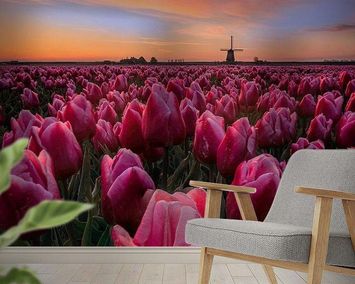 Sfeerimpressie behang: Springtime sunrise in the Netherlands van Costas Ganasos