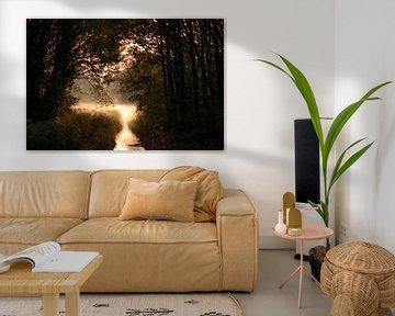 Ein Blick auf ein Feld mit goldenem Bodennebel von Bas Ronteltap