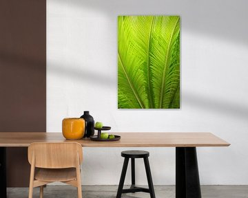grüne Palmenblätter von Susanne Bauernfeind