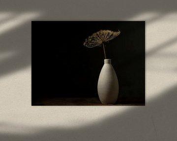 Stilleben Getrockneter Bärenklau im Steinglas von Anja den Bok
